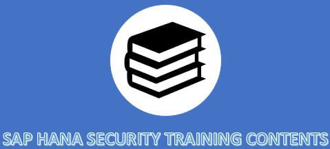 sap security tutorial for beginners